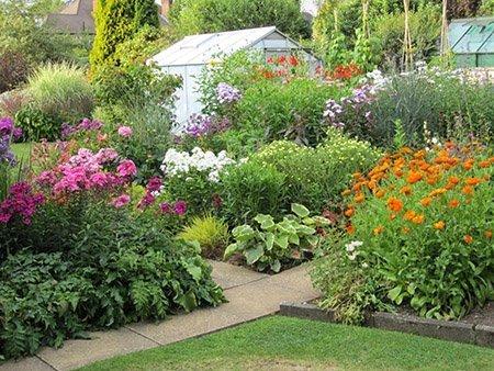 41 Shelvers Way 450 - The National Garden Scheme - Find An Open Garden In Surrey