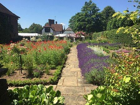 Bardsey 450 - The National Garden Scheme - Find An Open Garden In Surrey