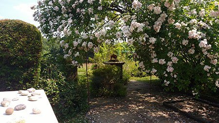 Chauffeurs Flat 450 - The National Garden Scheme - Find An Open Garden In Surrey