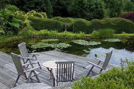 Little Priory 450 - The National Garden Scheme - Find An Open Garden In Surrey