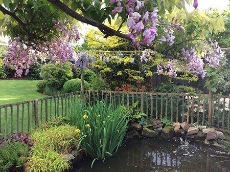 Monks Lantern 450jpg - The National Garden Scheme - Find An Open Garden In Surrey